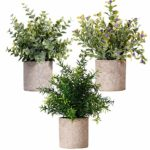 Mini Plastic Plants Small Fake Plant Real Eucalyptus Rosemary Gypsophila 3pack Set with Pot Indoor Green Bonsai for Home Bathroom Kitchen Office Desk Garden Decoration