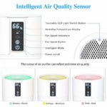 Air Cleaner for Allergies